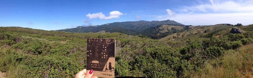 mill-valley-california